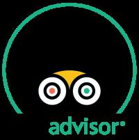 TripAdvisor COE 2019 Logo